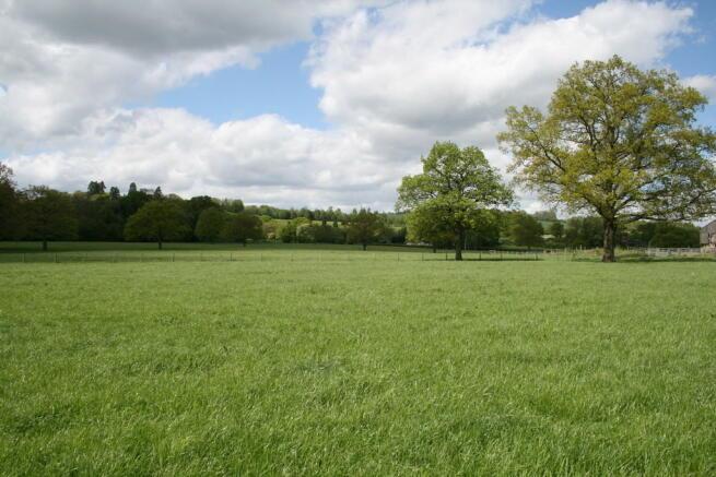 Permanent Pasture