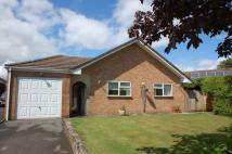 3 bed Bungalow to rent in 3 Bed Detached Bungalow...