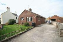 Detached Bungalow in Stockwell Green...