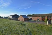 4 bed Equestrian Facility home for sale in Mill Lane, Scholar Green...