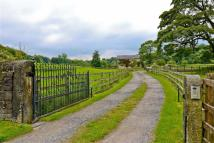 North Street Equestrian Facility house for sale