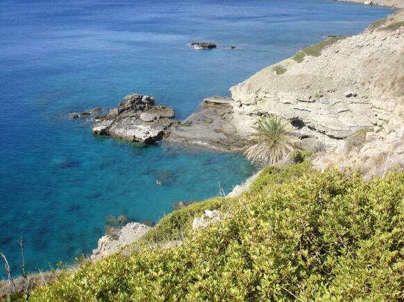 Swimming Gulf