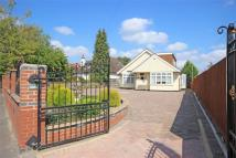 Detached Bungalow in Coombe Lane...