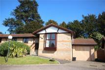 2 bed Bungalow for sale in Orchard Close...