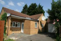 4 bedroom Detached Bungalow to rent in North Hayes