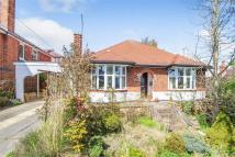Detached Bungalow for sale in Bakewell Avenue, Carlton...