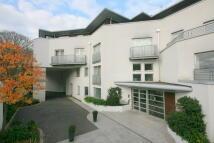 Flat to rent in Cityview, Lansdowne Lane...