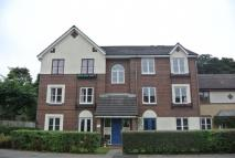 Hazledene Court Flat to rent