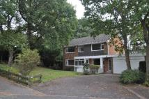 Detached house in Felton Road Poole BH14...