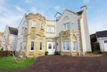 7 bedroom Detached property in 41 Braehead Place...