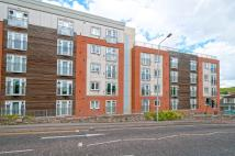 1 bed home to rent in Carton House, New Road...