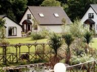 House Share in Glen Shant Auchrannie...