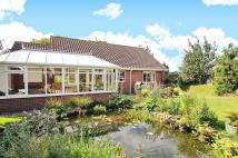 3 bed Detached house for sale in Old Forge Close, Woodton...