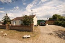 Eversley Road Detached Bungalow for sale