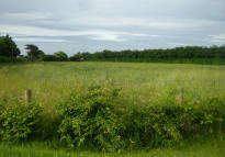 property for sale in The Trial Ground,