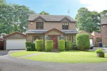 4 bed Detached home in Parkshiel, South Shields...