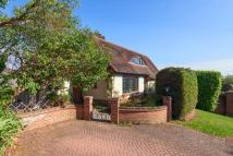 3 bed Detached house in RALEIGH PARK ROAD...