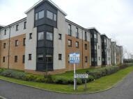 2 bedroom new Flat to rent in Shawfarm Gardens...