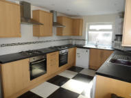 Terraced house to rent in Cathays Terrace, Cardiff...