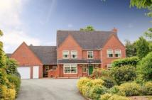 7 bed Detached home in Holyhead Road...