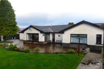 4 bed Detached Bungalow for sale in Thornbury Close...