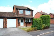 Detached property to rent in Longstock Close...