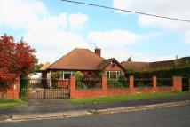 Bungalow to rent in Highlands Road...