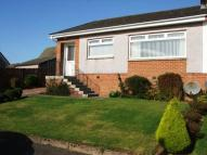 2 bed semi detached house to rent in KILRUSKIN DRIVE...