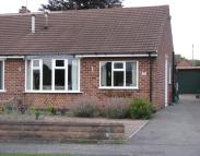 Bungalow to rent in Wells Road, Mickleover...
