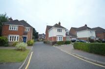 4 bedroom Detached property to rent in Duchess Grove...