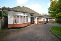 2 bedroom Detached Bungalow in Bressey Grove...