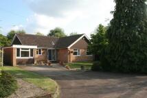 4 bed Detached Bungalow for sale in Preston Grove, Ashtead