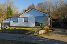 3 bedroom Detached Bungalow for sale in Llanbister...