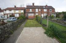LAUND HILL Flat to rent