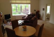 2 bed Flat to rent in Belsize Park , London...