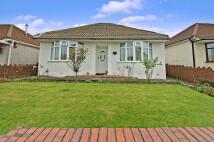 2 bedroom Detached Bungalow in 100 Caemawr Road...