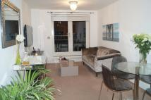 Commercial Road Flat to rent