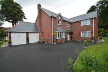 5 bedroom Detached house in Mold Road, Wylfa Hill