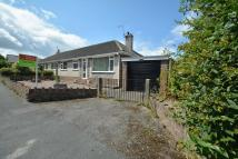 semi detached home for sale in Beech Road, Drury