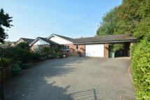 Detached Bungalow for sale in Red Road, Buckley