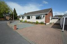 Detached Bungalow for sale in Green Park, Penyffordd...