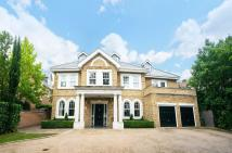 7 bed Detached property for sale in Emerson Park, Hornchurch...