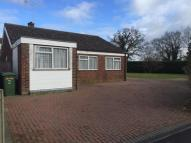 Detached Bungalow to rent in Jubilee Road, IP25