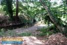 One of the streams
