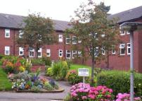 Sheltered Housing to rent in Brook Villas, Talke Road...