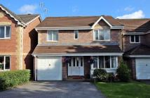 Detached home for sale in Willow Close, Beddau...