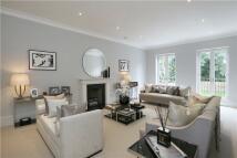 semi detached house in Elsynge Road, Wandsworth...