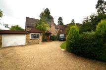 Detached home in Warren Road, Ickenham...