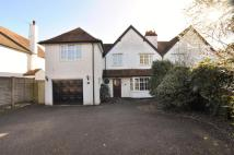 4 bed house in Norton Road...