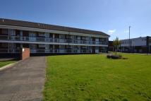 1 bedroom Flat to rent in Charlesfield Grove Park...